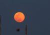 luna delle fragole roma